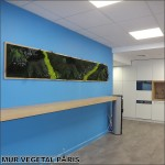 Mur-vegetal-stabilise-paris-aeneas-office-1