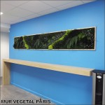 Mur-vegetal-stabilise-paris-aeneas-office-2