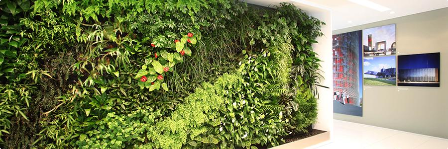 Présentations produits pour mur végétal
