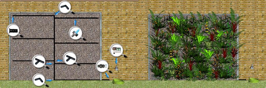 L'arrosage d'un mur végétal en extérieur