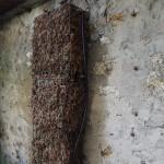 L'arrosage d'un mur végétal en sphaigne