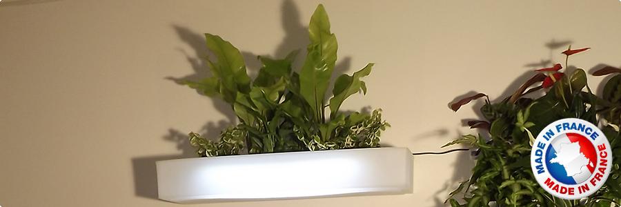 Présentation Tablette végétale  lumineuse végéto
