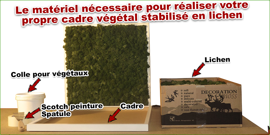 Comment créer un cadre végétal stabilisé en lichen - Matériel