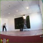 Etape 5 Création d'un mur végétal stabilisé 7