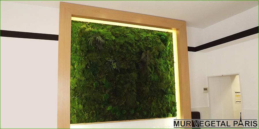 Comment créer un mur végétal stabilisé - Mur-Végétal.Info