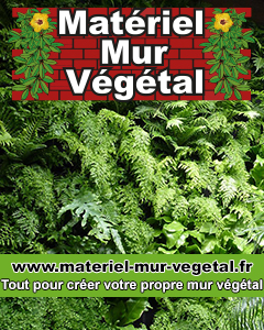 Matériel Mur Végétal