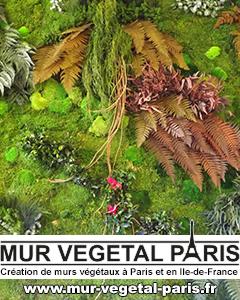 Mur Végétal Paris