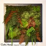 Cadre végétal stabilisé Tablo'Nature 30x30cm Green Crystal