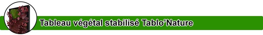 Catégorie Tableau végétal stabilisé Tablo'Nature