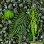 Tablo'Nature Green Eucalyptus 30x30cm
